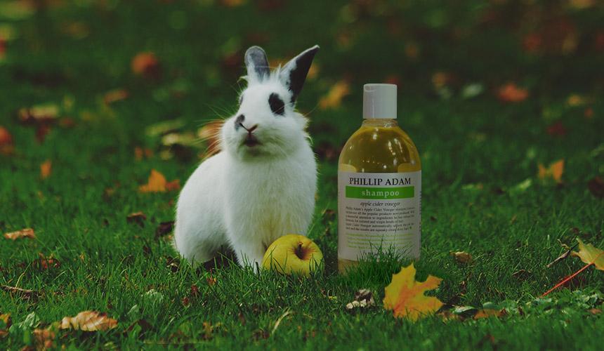 cruelty free shampoo